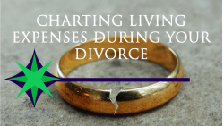 Charting Living Expenses During Your Divorce